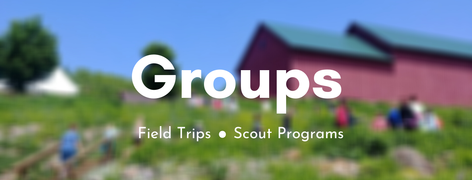 Groups. Field Trips. Scouts.
