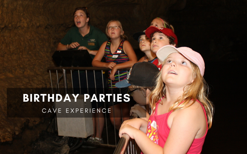Birthday Parties Cave Experience
