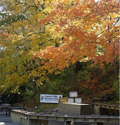 Photo of our Sluice feature in autumn