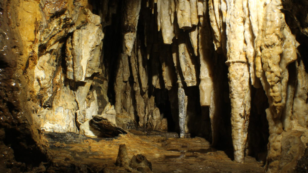 Photo of Surprise Cave