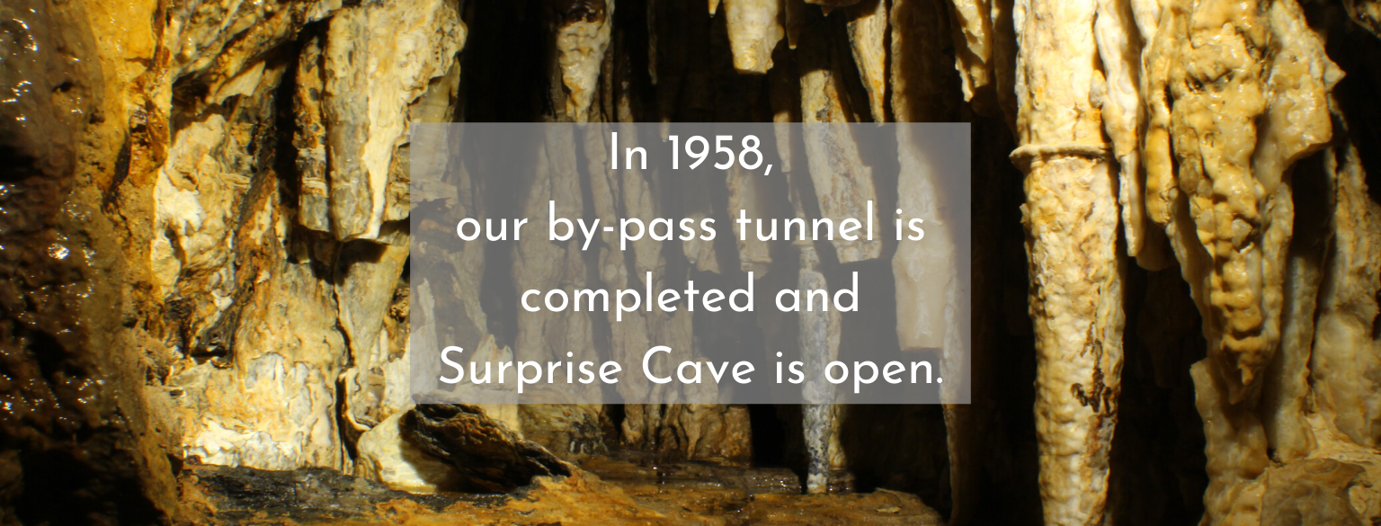 In 1958, our by-pass tunnel is completed and Surprise Cave is open
