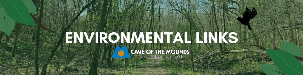 Environmental Link