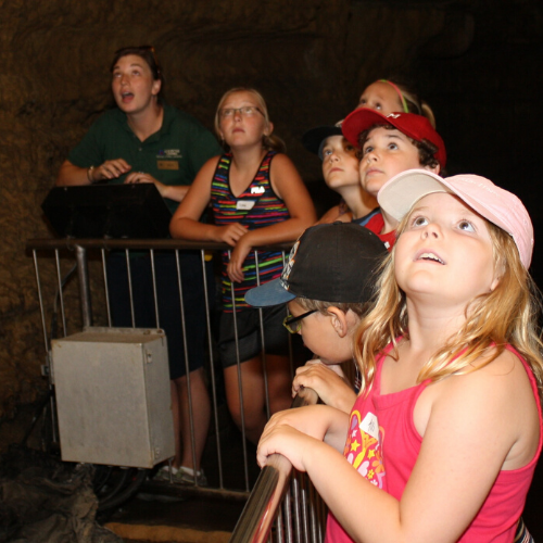 Photo of tour guide with kids in cave