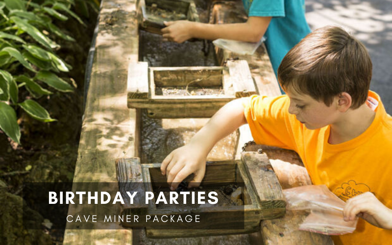 Birthday Parties Cave Miner Package