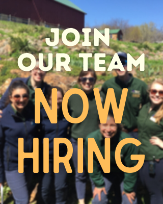 Join our team. Now Hiring