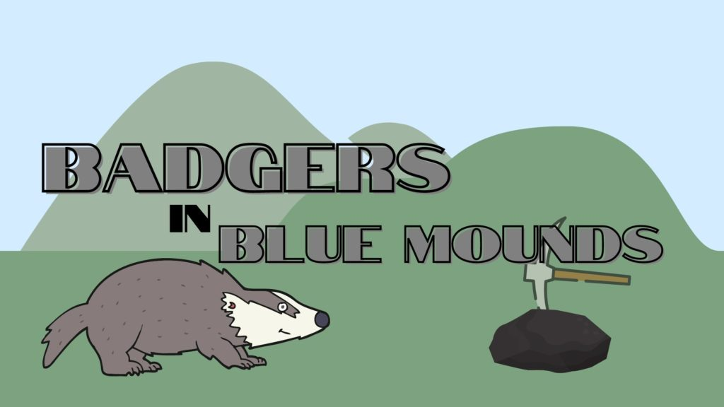 Badgers in Blue Mounds